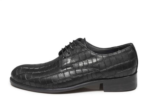 عکس مدل کفش ایتالیایی دسلو